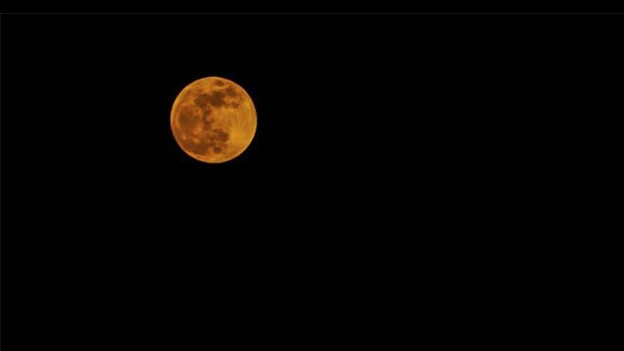 Skygazers watch century's longest 'blood moon'