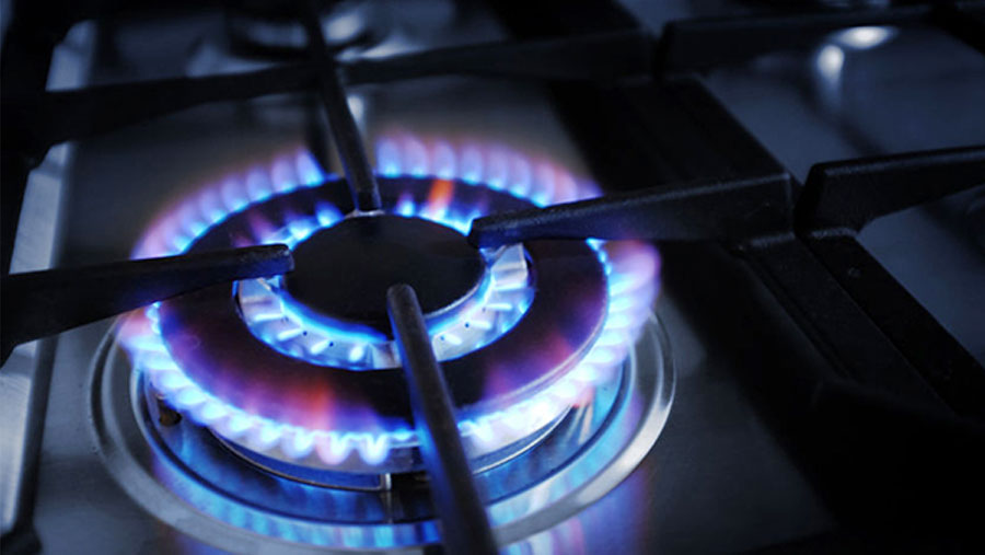 BERC decides not to hike gas price