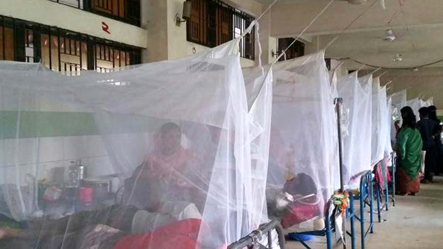 84% dengue affected patient returned home after treatment