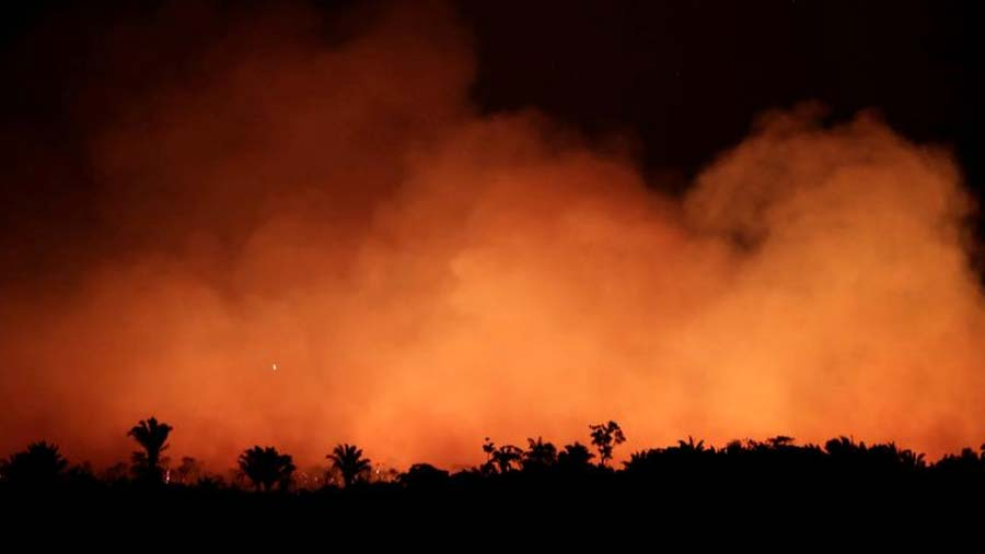 Brazil sends army to tackle Amazon fires