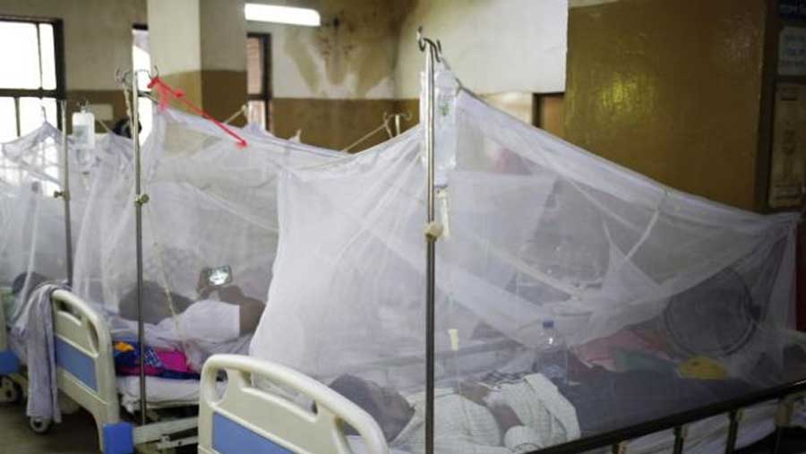 Fresh dengue cases come down: LGRD Minister