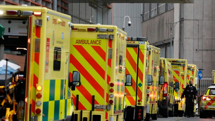 UK registers daily record of 1,564 Covid-19 deaths