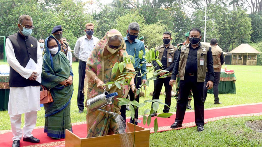 Plant more trees, take care those to reap benefit: PM