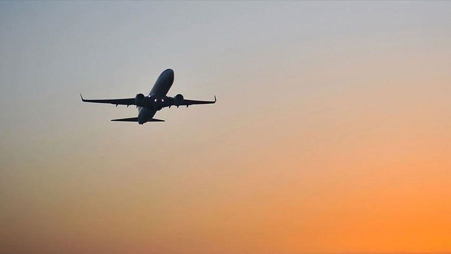 Domestic flight suspension extended for another week