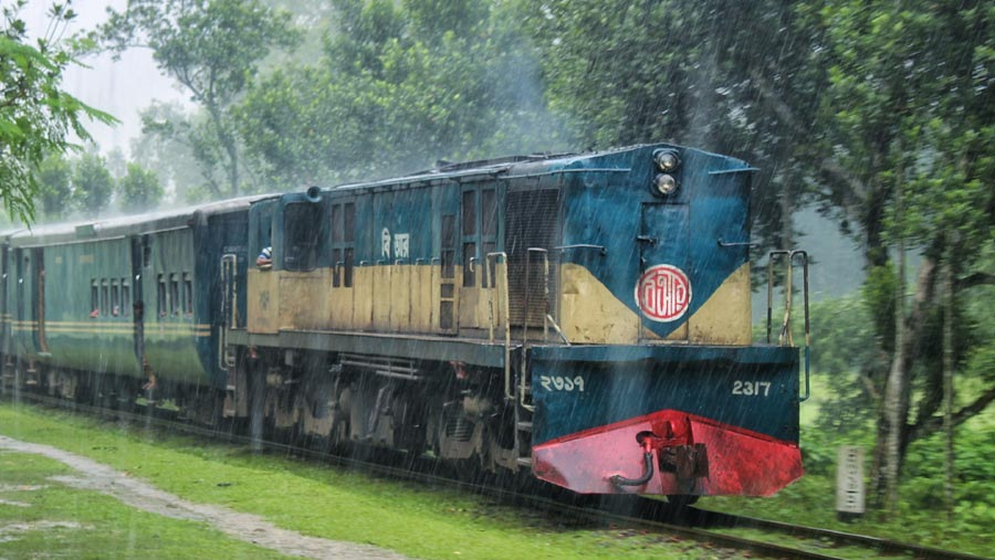 Special cattle train service on Jul 17, 18, 19